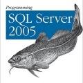 کتاب «برنامه نویسی SQL، آماده شدن برای اعماق» Programming SQL Server 2005: Prepare for Deeper SQL Server Waters